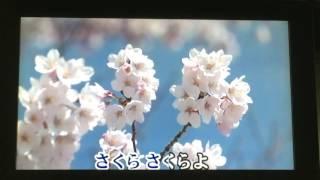 さくらよ  沢井明(沢井あきら)