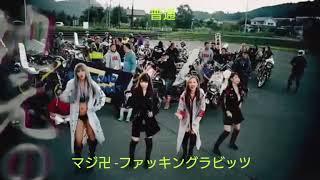 【Tik Tok】『カット修正版』マジ卍 -ファッキングラビッツ